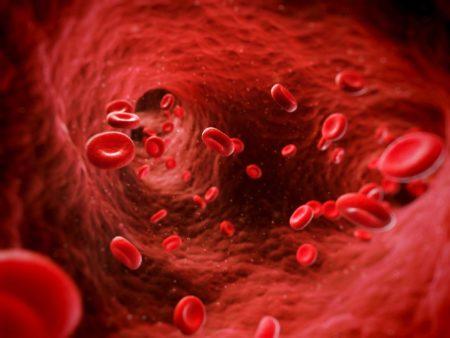 RDW в анализе крови — о чем говорит этот показатель, расшифровка и норма