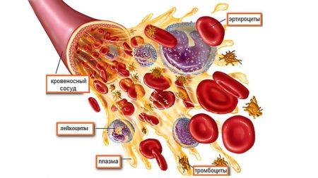 Наличие алкоголя в крови при биохимическом анализе