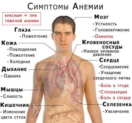 Гемоглобин 63 у женщин