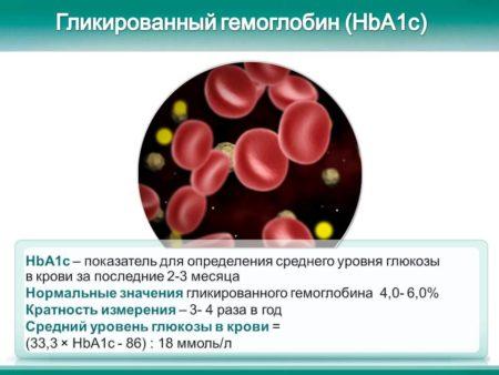 Какой гемоглобин считается нормальным