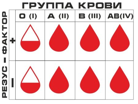 Совместимость женщин и мужчин секса и группа крови