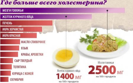 Креветки холестерин